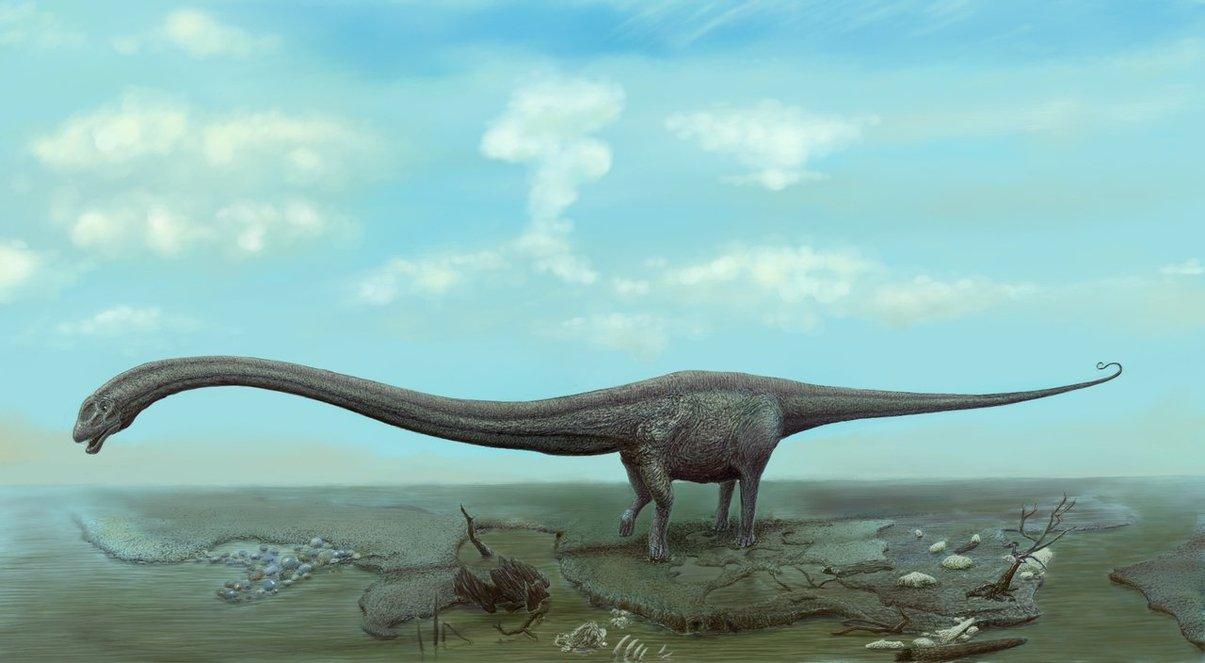 mamenchisaurus_by_ashirox