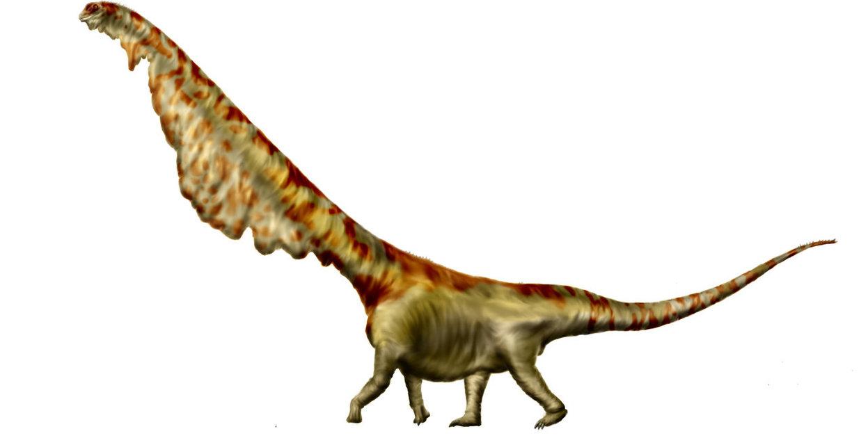 mamenchisaurus_sinocanadorum_by_durbed-d6bzkmx